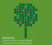 Bearing Fruit: Good Practice in asset-based rural community development.