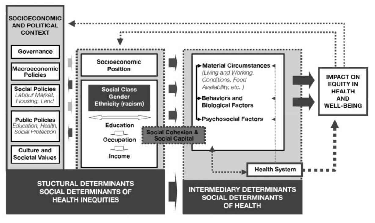 Fig. 1 - The Social Determinants of Health conceptual framework. Source - Solar and Irwin (Solar and Irwin (2010), p. 6)